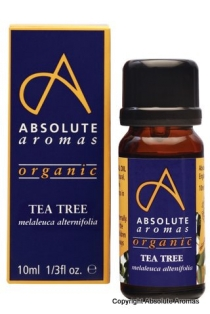 Absolute Aromas-Organic Tea Tree